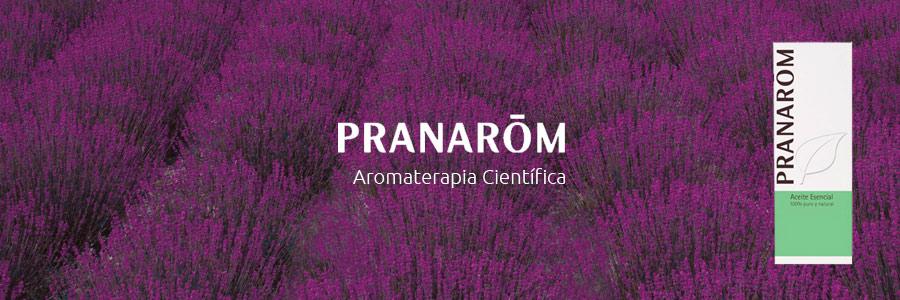 aromaterapia científica
