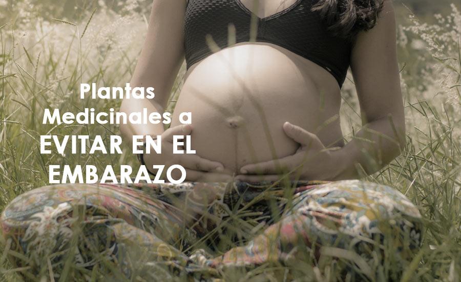 Sabila embarazo el puede se en tomar