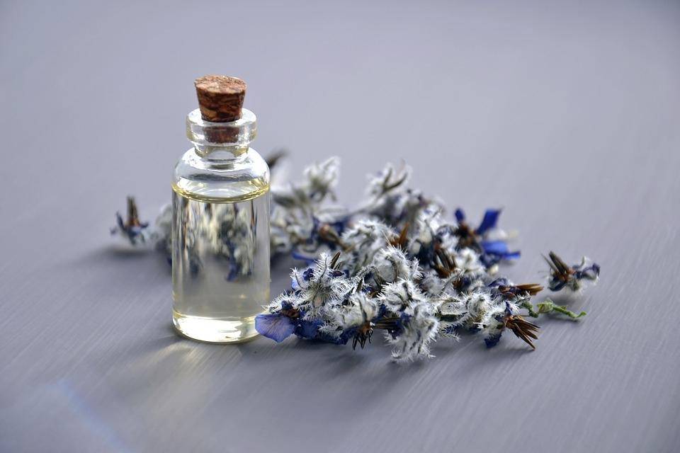 frasco de aceites esenciales y plantas