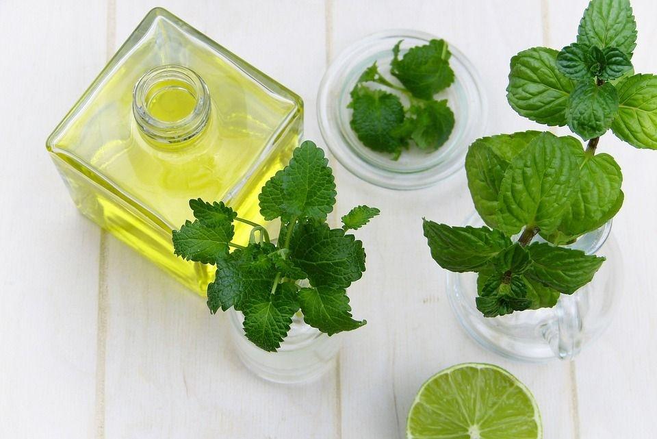 frasco y plantas de menta