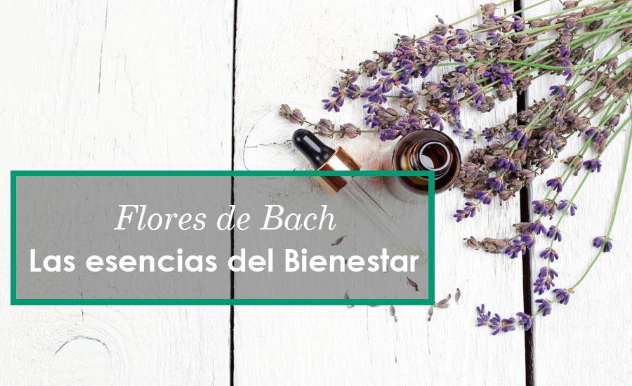 Propiedades de las Flores de Bach
