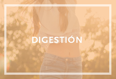 Digestión