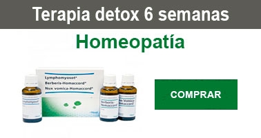 terapia-detox-6-semanas