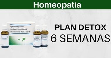 plan-detox-seis-semanas