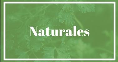Repelentes naturales y calmantes para picaduras