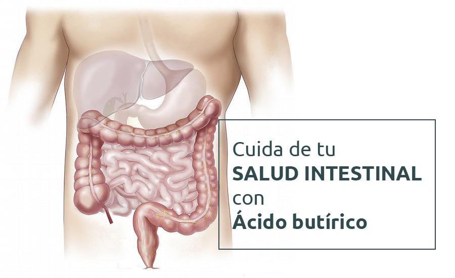 Cuida de tu salud intestinal con acido butirico